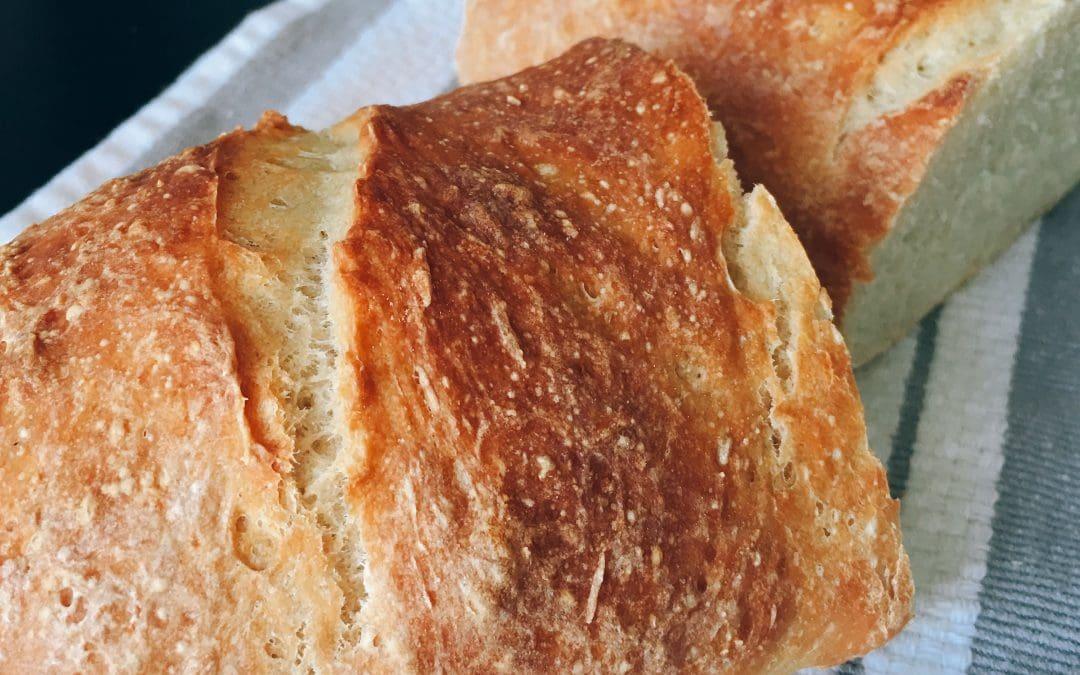 No Knead Bread, encore